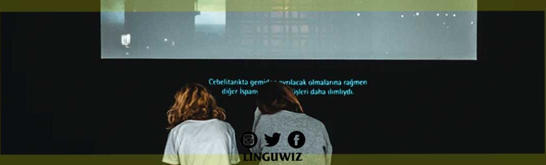 The Process of Subtitling Strategies